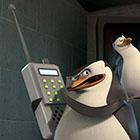 app-marketing-penguins-small